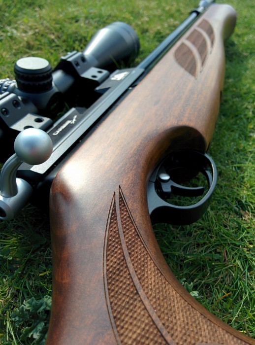 How To Get Into Shooting For Beginners (Air Pistol / Air Rifle)
