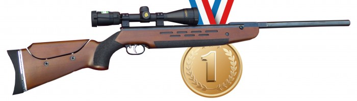 The Best Air Rifle On The Market?