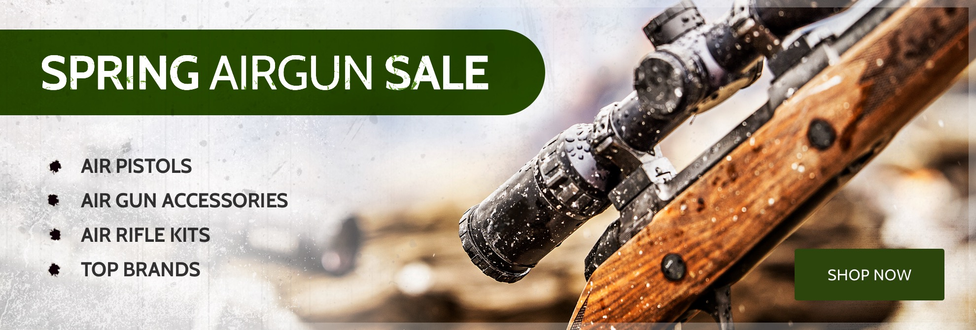Spring Airgun Sale