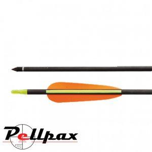 Carbon Arrows 5 Pack