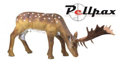 3D Fallow Deer