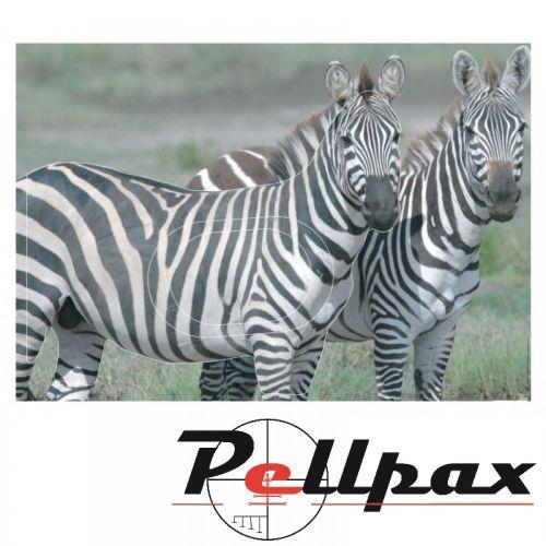 Zebra Paper Target