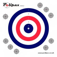 Practice Targets 17x17 cm