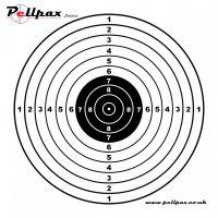 Pistol Targets 17x17 cm