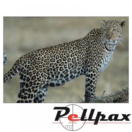 Leopard Paper Target