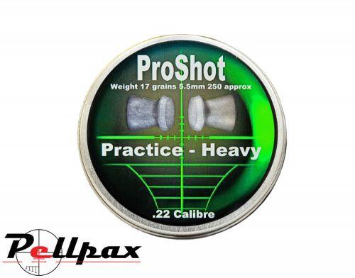 ProShot Practice Heavy .22 x 250