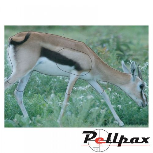 Gazelle Paper Target