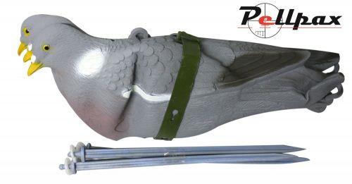 Sport Plast Easy Fold Pigeon (Set of 3)