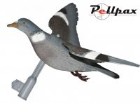 Sport Plast Flying Pigeon Set