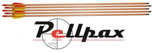 Wooden Arrows by Petron